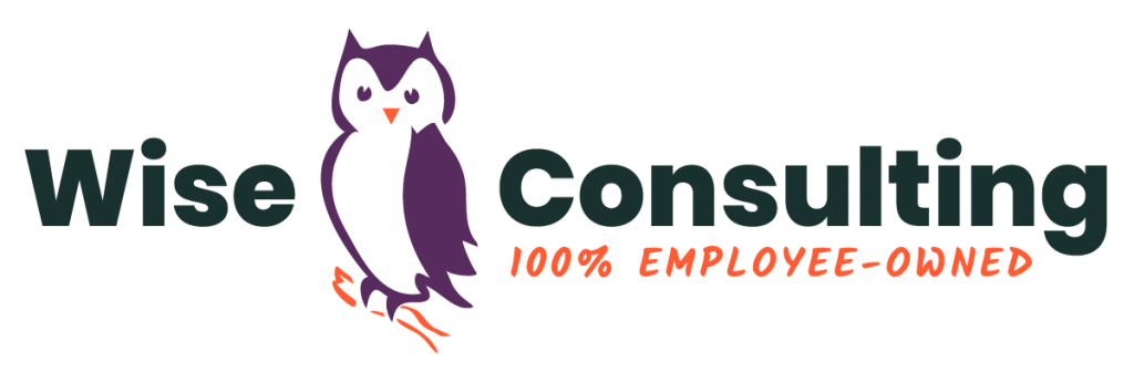 Wise Consulting logo